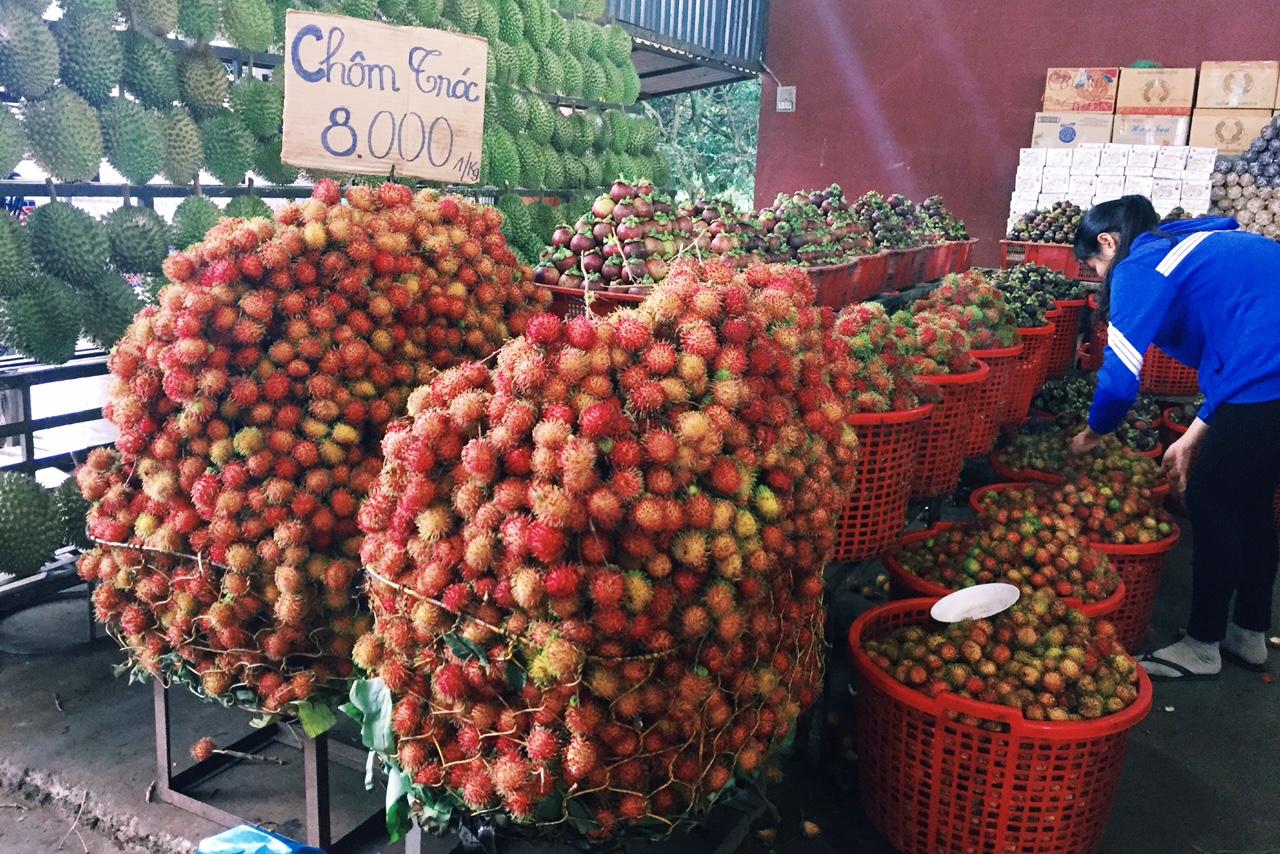 vietnam_fruit