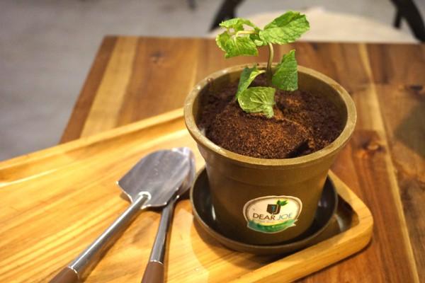 植木鉢アイスクリーム